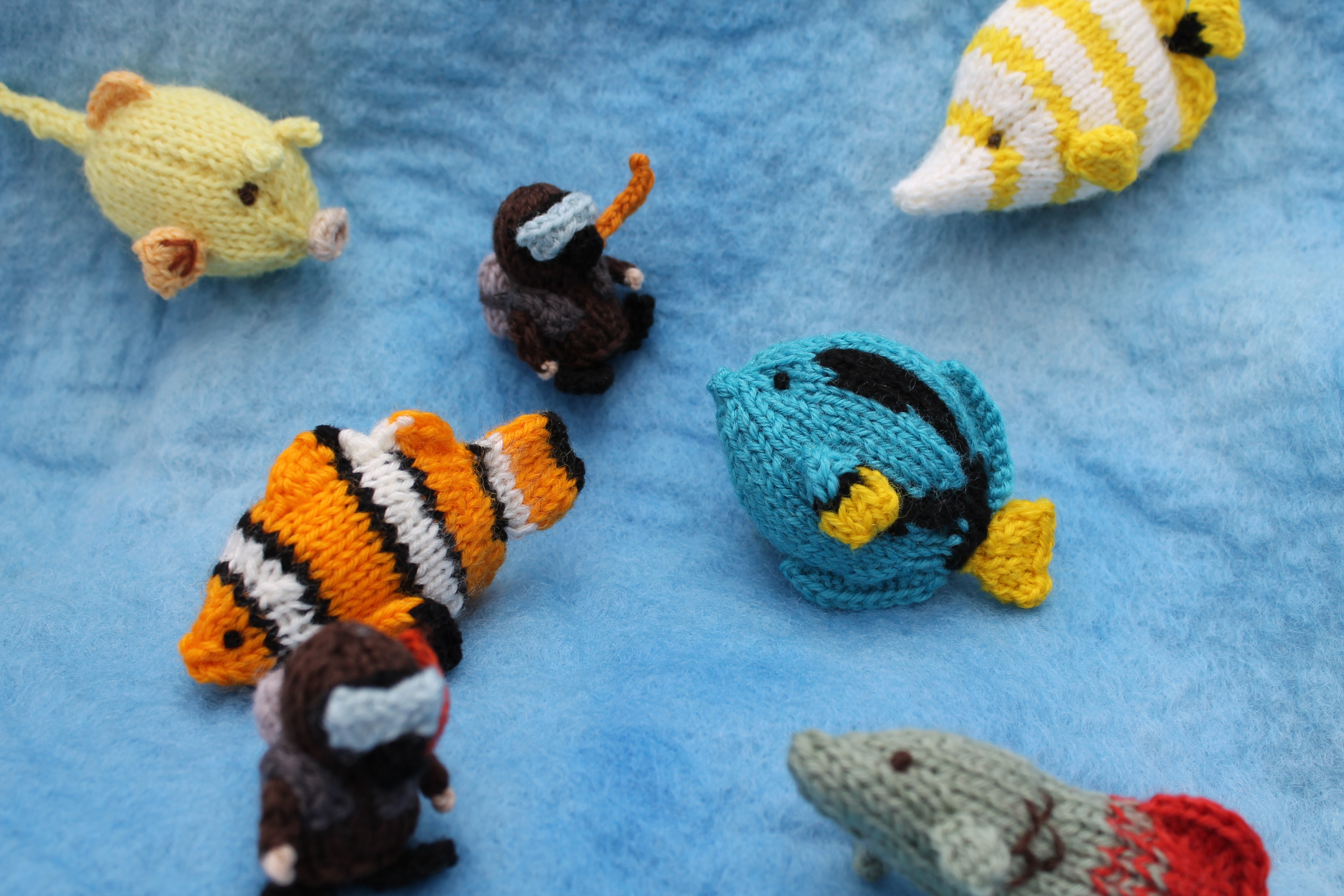 Knitted Amigurumi Sea Creatures : Knitted tropical ocean knits by sachi